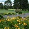 A view from Hayward Golf Club